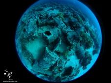planeta conte_c
